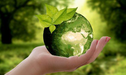 6 astuces toutes simples pour faire du bien à la planète
