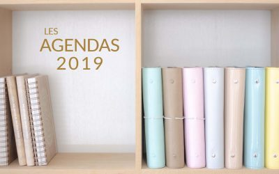 HAPPY FLOW : l'agenda qui rendra 2019 WouaW